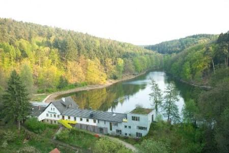 Seehaus-Forelle
