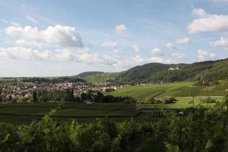 Bad Bergzabern 4 Blick auf Burg Landeck