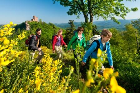 Pfalz.Toursistik2_RPT-2011-Pfälzer Weinsteig-089-Annweiler Blick auf Burg Trif