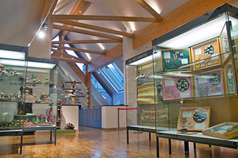 Pfalzmuseum_Web