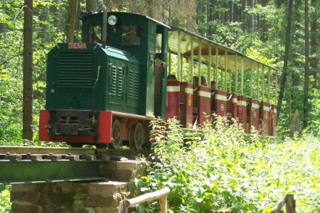 Stumpfwaldbahn100_5329