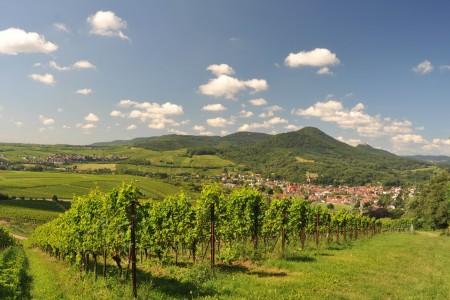 Trifelsland_Annweiler