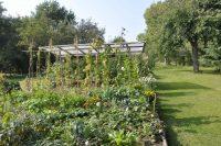 Garten-Wettbewerb eröffnet