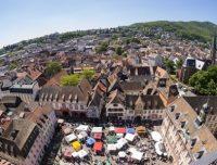 Pfälzerwald: SDG-Modellregion für ein nachhaltiges Rheinland-Pfalz