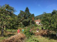 Gärten für die Artenvielfalt prämiert