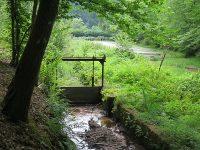 Ausflugstipp: Trifterlebnispfad bei Elmstein