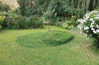 Der Waldgarten