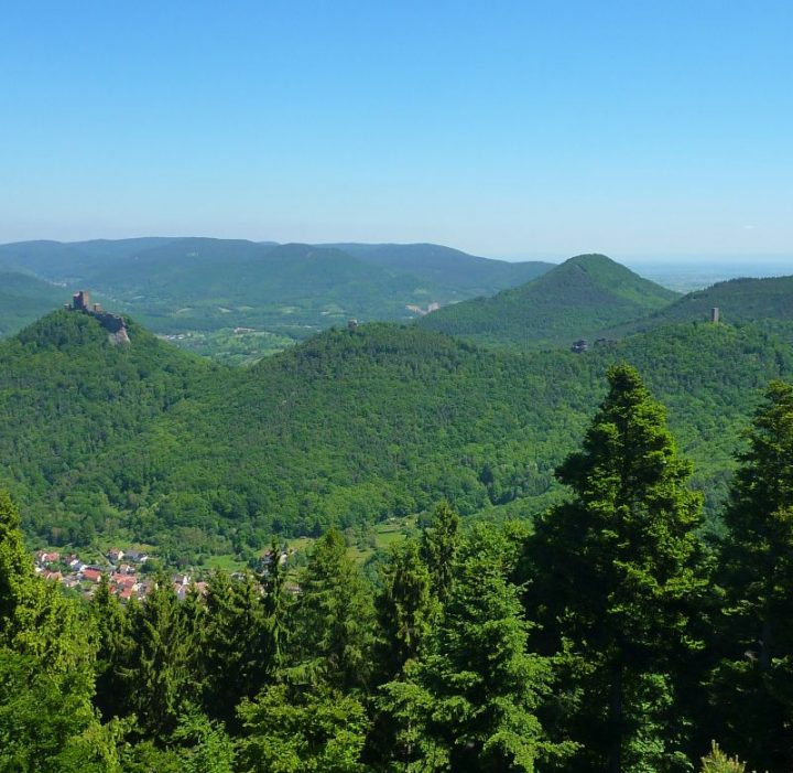 Blick vom Rehbergturm zum Trifels
