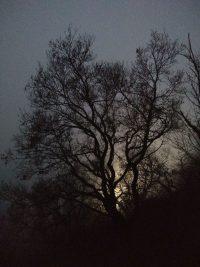 Der Dunkelheit auf der Spur