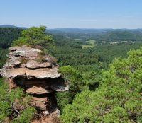 Umweltpraktikum im Biosphärenreservat