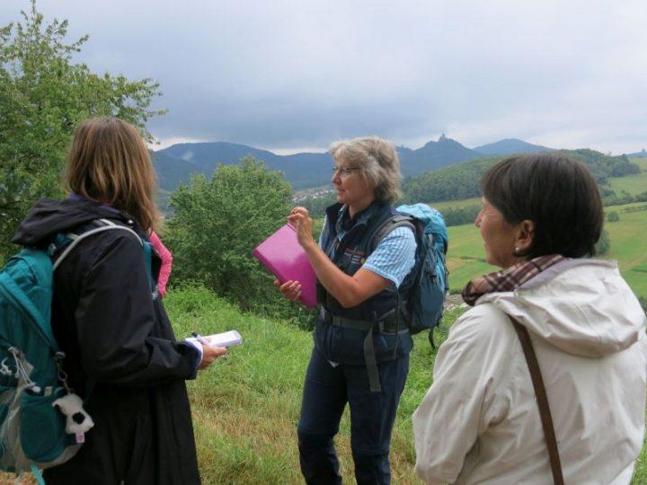 Biosphären-Guide Andrea Frech steht vor einer Gruppe, im Hintergrund der Pfälzerwald