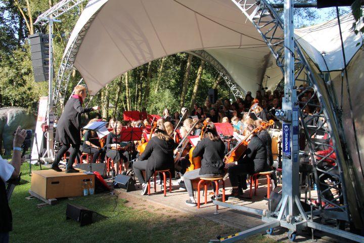 Das Bild zeigt ein Orchester