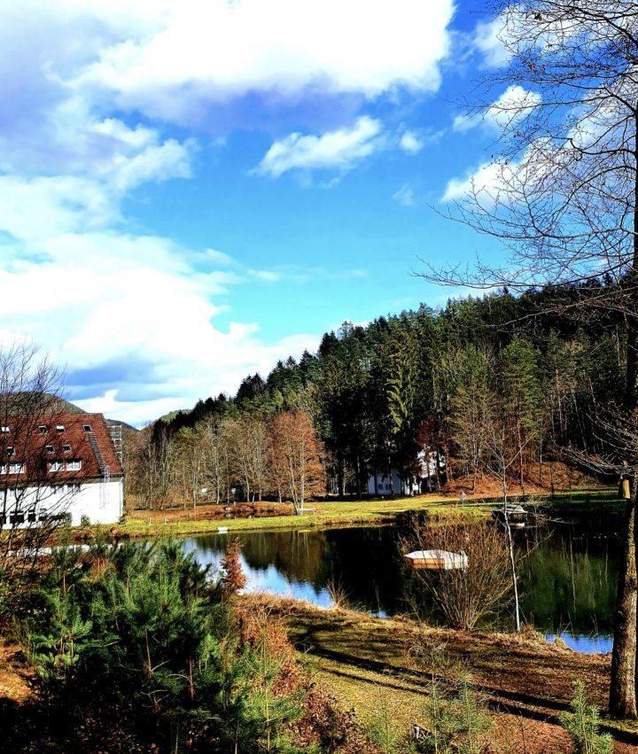 Das Bild zeigt einen See mit einem Haus im Hintergrund