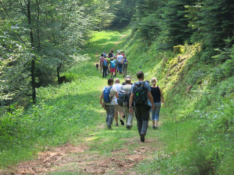 Das Foto zeigt eine Gruppe an Menschen im Wald