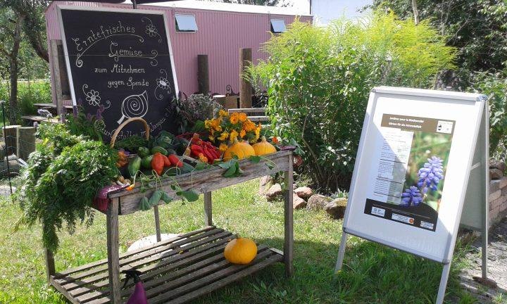 """Das Bild zeigt einen """"Verkaufsstand"""" mit frischem Gemüse zum Mitnehmen gegen eine Spende"""
