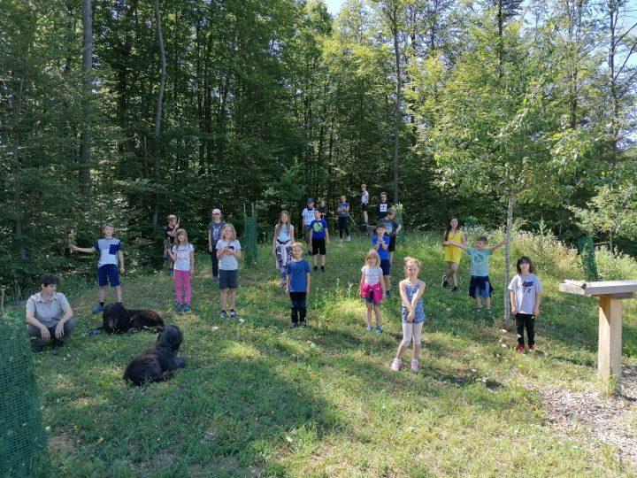 Das Bild zeigt Kinder auf einer Wiese