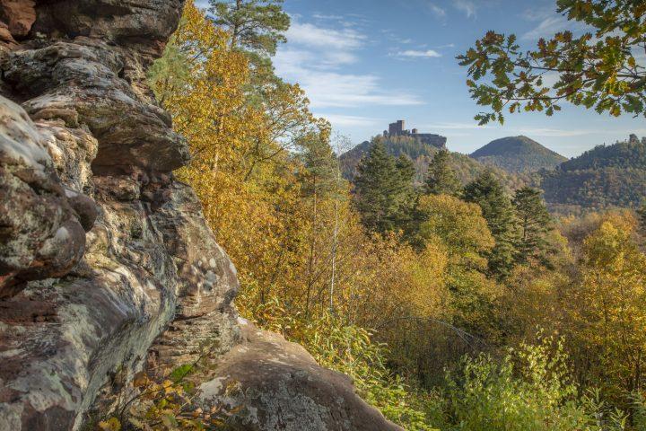 Das Bild zeigt den Blick vom Felsen Asselstein zum Trifels im frühen Herbst mit seinen bunt gefärbten Laubbäumen.